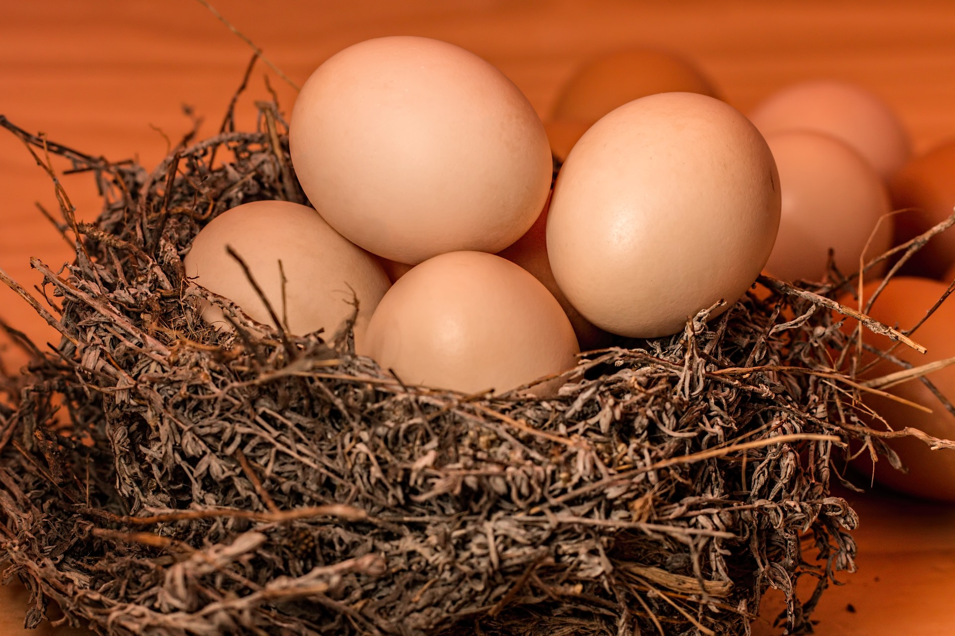 Egg Hair masks for Beautiful and Thick hair