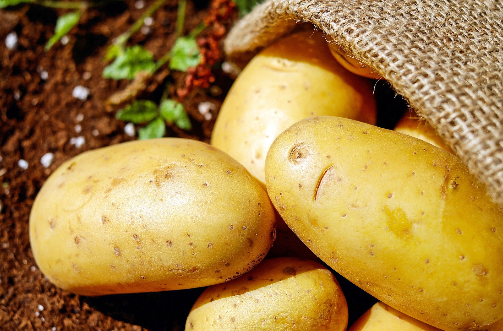 Potato facemask for skin whitening and dark spot removal